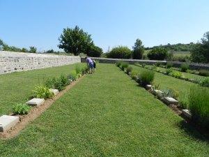 Αναζητώντας κυπριακούς τάφους...