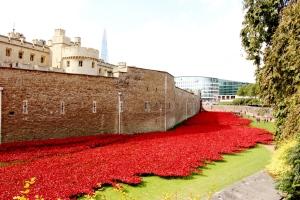 Η τάφρος με τις παπαρούνες γύρω από τον Πύργο του Λονδίνου. (η φωτογραφία λήφθηκε 12/9/14)